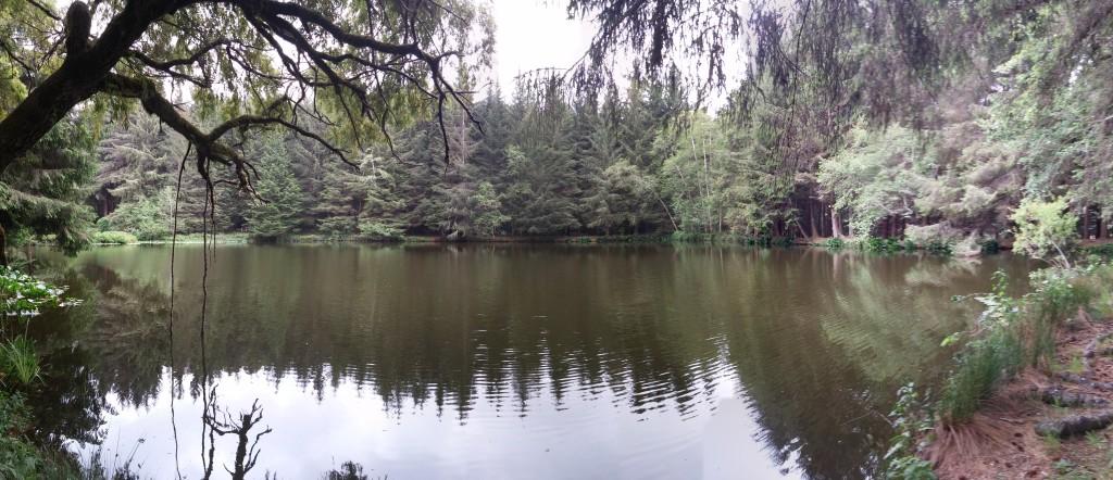 Lake in Elk Country RV Resort