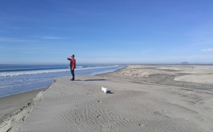 South of San Quintin on the Pacific coast