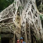 One of the famous trees of Ta Prohm